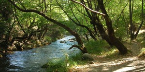 Alfeios-river-1