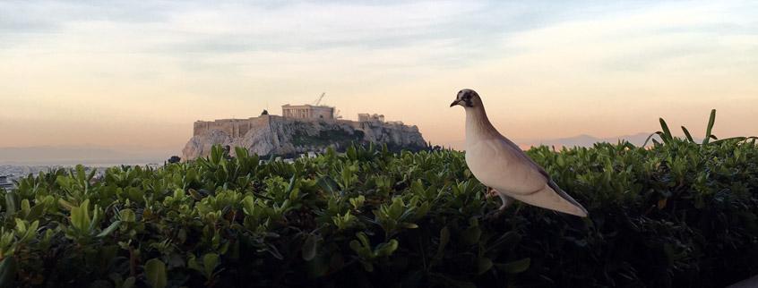 Athens-Acropolis-Greece-Attica-2