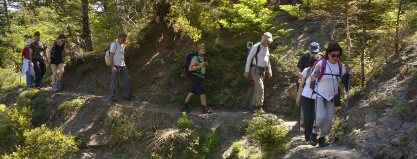 Menalon-Trail-1-Arcadia-Peloponnese-Greece