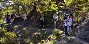 Menalon-Trail-3