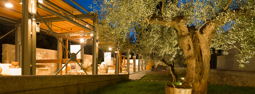 Olive-Oil-Museum-in-Sparta-2-Peloponnese-Greece