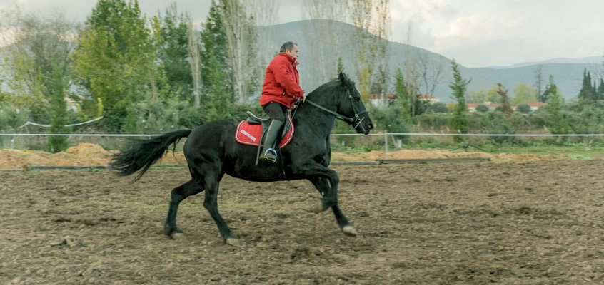 Horse-riding-in-Nafplio-of-Peloponnese-in-Greece-4