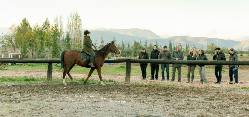 Horse-riding-in-Nafplio-of-Peloponnese-in-Greece-5