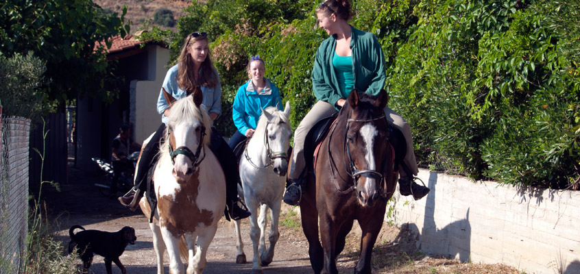 Horse-riding-in-Nafplio-of-Peloponnese-in-Greece-6