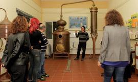 Ouzo-&-Honey-tour-in-Nafplio-of-Peloponnese-in-Greece-270-160