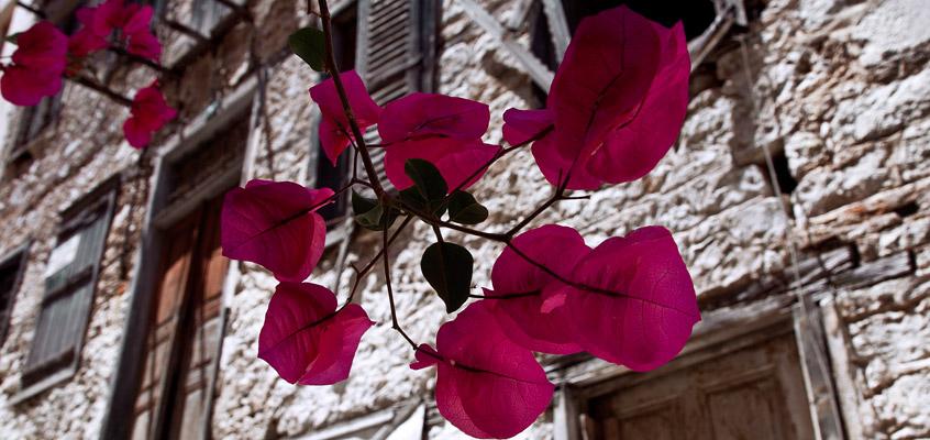 Photo-tour-of-Nafplio-6-in-Peloponnese-of-Greece