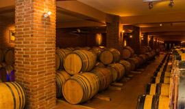 Wine-tour-in-Nemea-30-from-Nafplio-Peloponnese-270