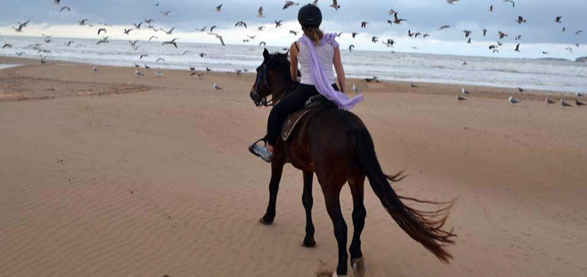 Beach-Horse-riding--in-Kalamata-of-Messinia-in-Peloponnese-of-Greece-1