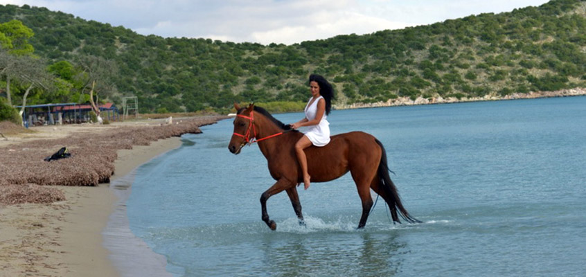 Beach-horse-riding-in-Kalamata-of-Peloponnese-in-Greece-1