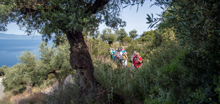 Hiking-tour-in-Kalamata-of-Peloponnese-in-Greece-2