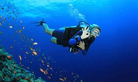 Scuba diving PADI course